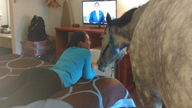 Канадка вселилась в американский мотель с лошадью