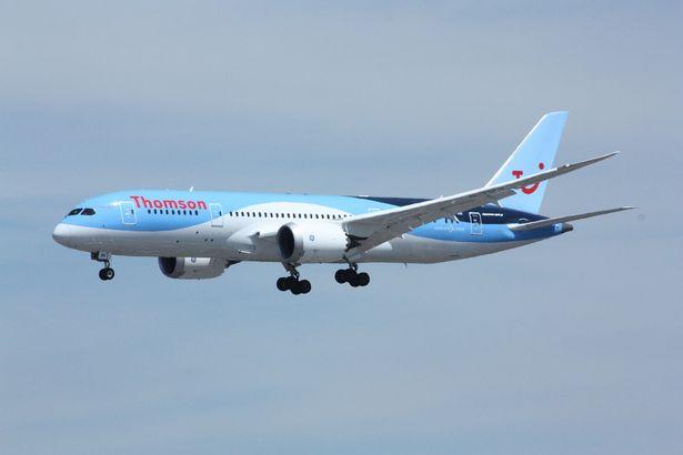 Пьяную британку связали на борту самолета полисмен и регбист