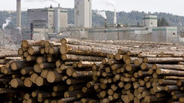 Тарифы на канадскую древесину снижены. Но не слишком