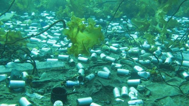 Подводный мусор у берегов Ньюфаундленда потряс исследователей