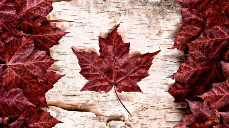 Вторая неделя года в истории Канады (СВС)