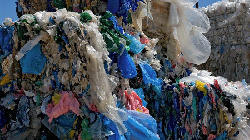 Эдмонтон истратит $30 тысяч на картины из мусора