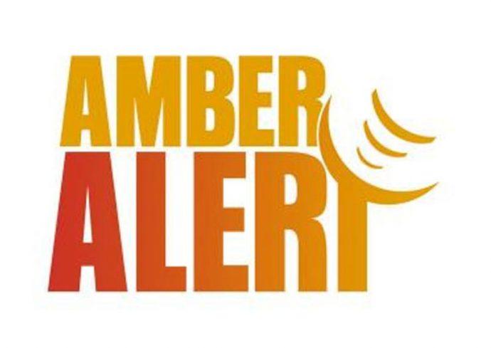 Пожаловавшегося на тревогу «Амбер» обвинили в хулиганстве
