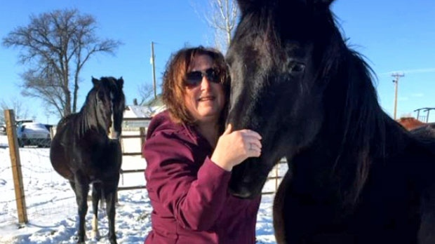 По делу попавших на бойню лошадей предъявлены обвинения
