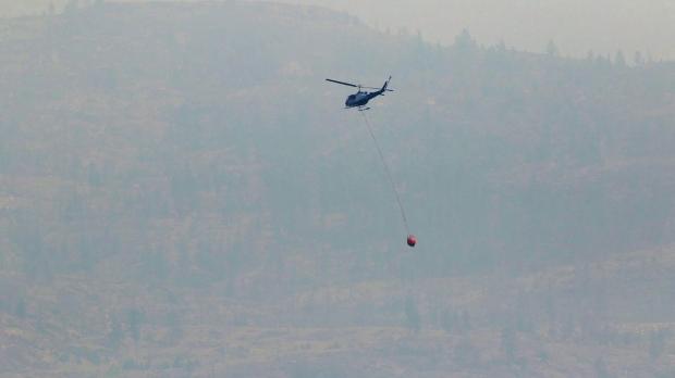Отдыхающие мешают тушить лесной пожар