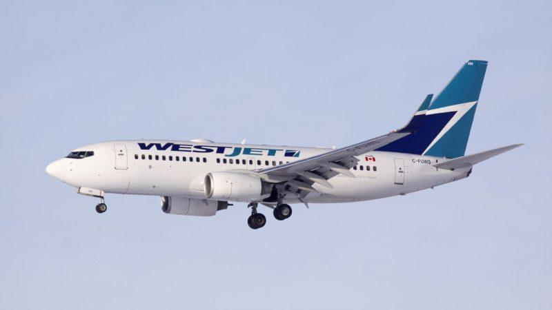 Канадская авиакомпания должна ответить за ампутированную ногу