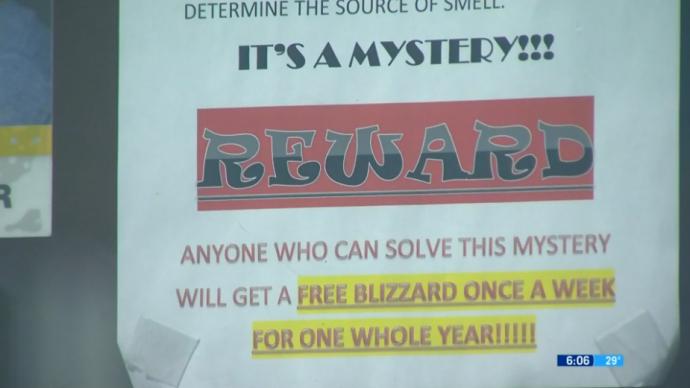 Кафе предлагает неделю бесплатного мороженого лучшим нюхачам