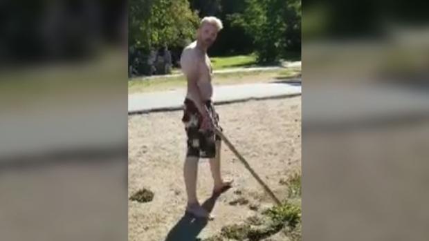 Чисто канадское убийство: подозреваемый забил до смерти гуся
