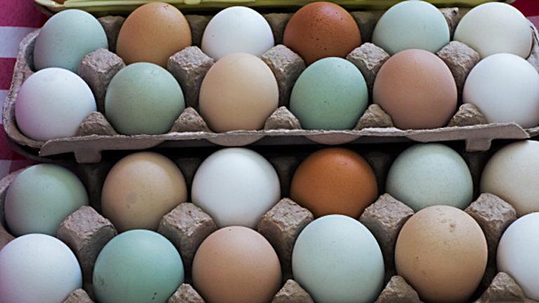Интересный бизнес: яйца курицу не красят... или наоборот