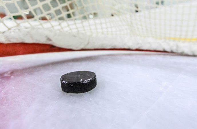 Сетка вокруг хоккейной коробки спасла бы жизнь девочки