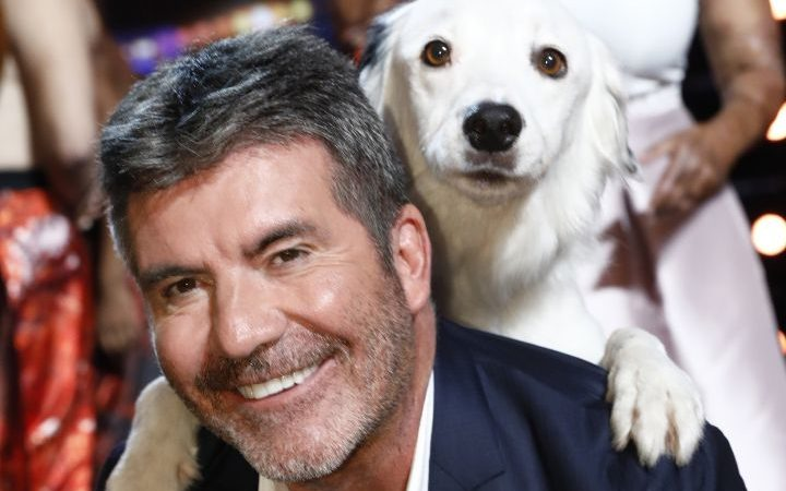 Ведущий American Idol спас собак от съедения в Корее
