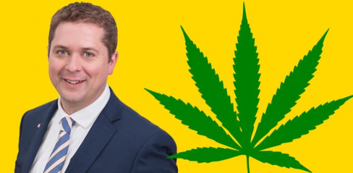Лидер оппозиции не обещал оставить марихуану легальной