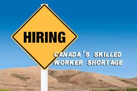 Канадским компаниям не хватает квалифицированных специалистов