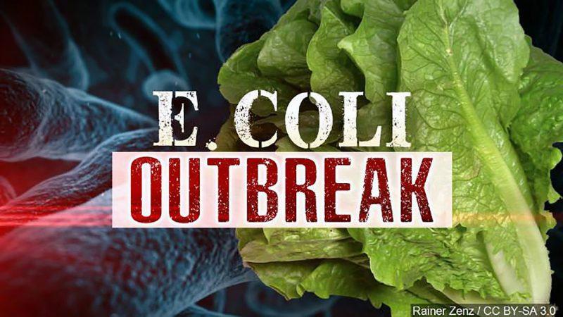 Опасная бактерия в салате: Онтарио, Квебек плюс Нью-Брансуик