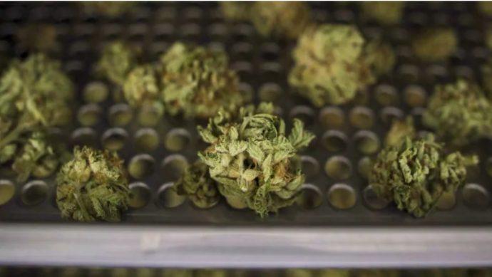 На сайте продажи марихуаны произошла утечка данных