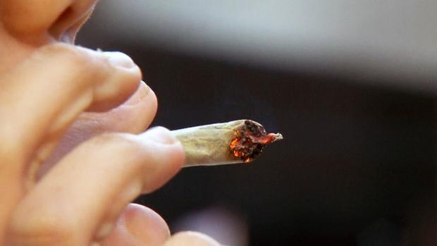 Всплеска «марихуанового» опьянения водителей в Канаде не отмечается