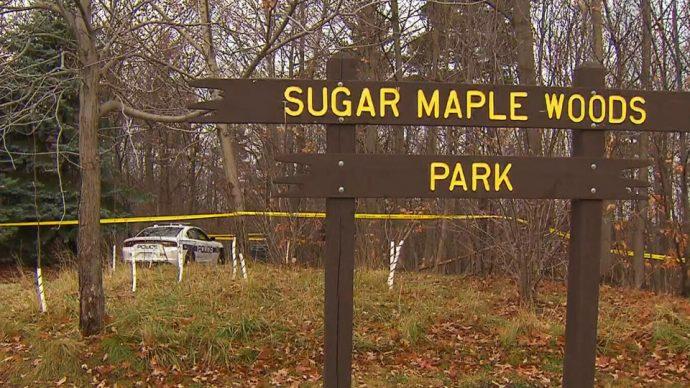 Никто никуда не умер: кровь и плацента в парке— часть «органического ритуала»