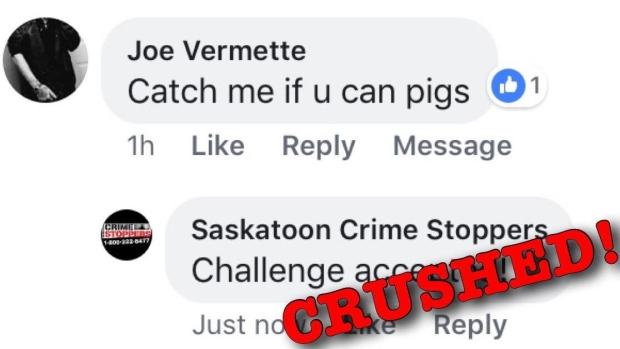 Бросивший вызов полицейским канадец пойман