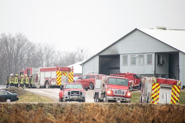 На пожаре в Милтоне погибли пять лошадей
