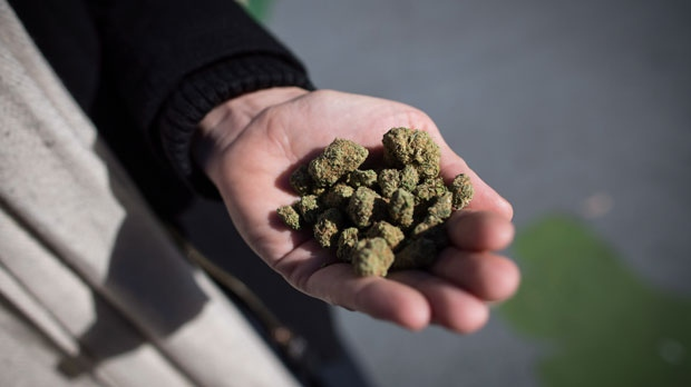 Миссиссага и Маркхэм отказались от магазинов с марихуаной. Торонто голосует завтра