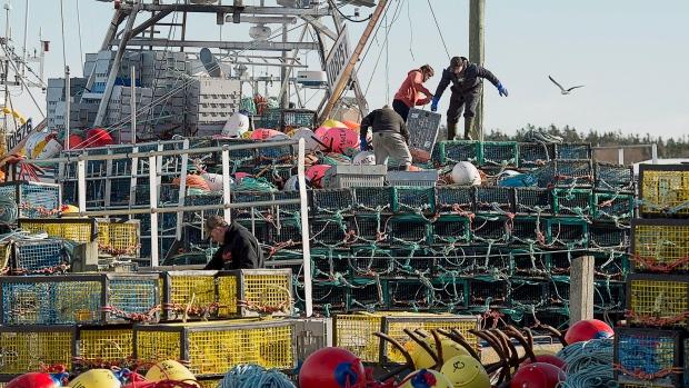 Новогодняя кража: 1200 фунтов омаров