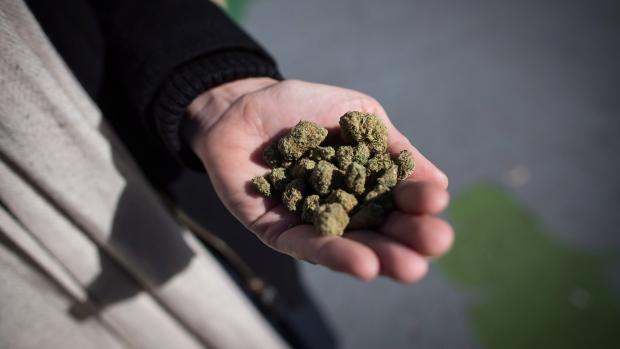 Проект: при ввозе в Канаду марихуаны штраф вместо тюрьмы