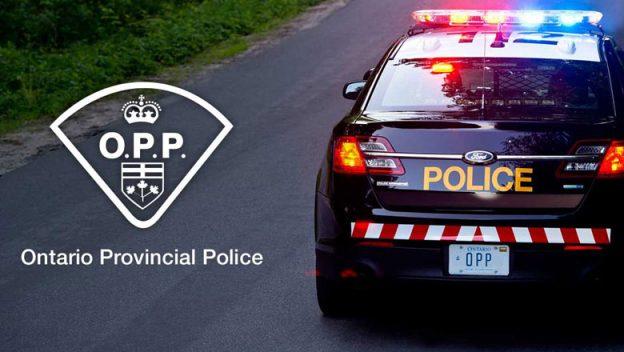 Полиция проводит дорожный рейд в ближайший уикенд