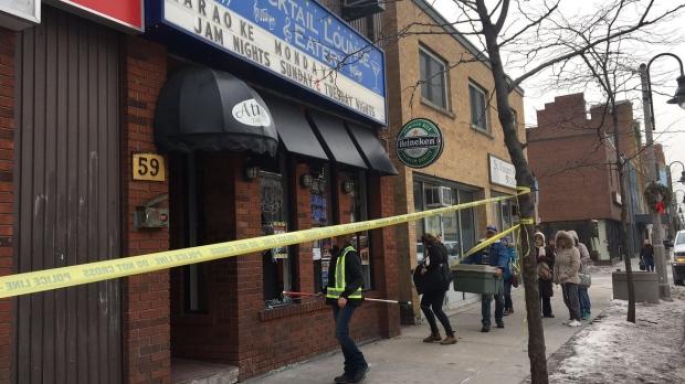 Олень взял на абордаж бар в Онтарио
