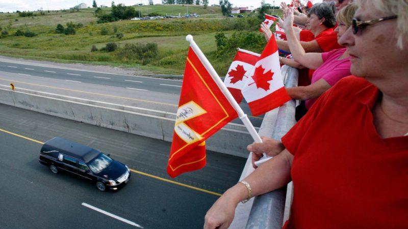 Вдоль канадской дороги Героев хотят высадить десятки тысяч деревьев