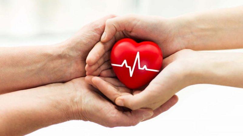Донорство органов в Новой Шотландии становится автоматическим