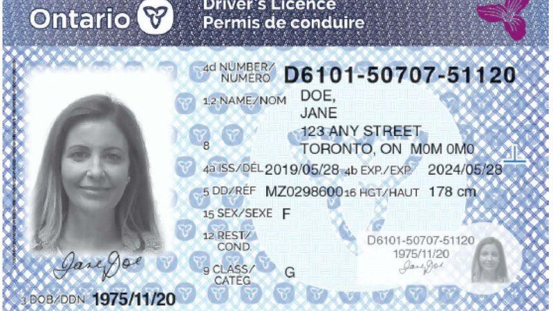 Вместе с новыми номерами в Онтарио появятся и новые права
