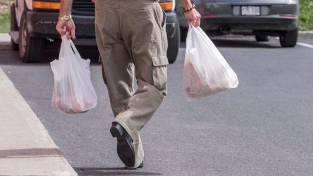 Ньюфаундленд и Лабрадор запрещает пластиковые пакеты