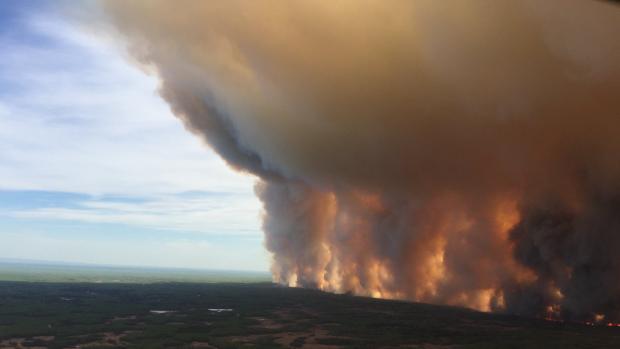 В Альберте начались обширные лесные пожары