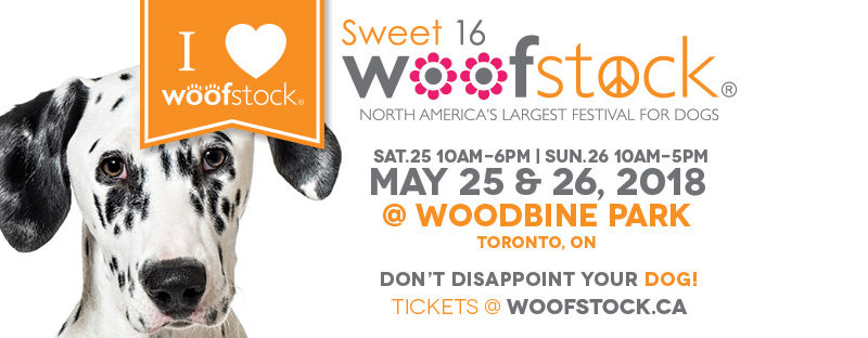 Woofstock: «гав-фестиваль» для наших друзей в Канаде