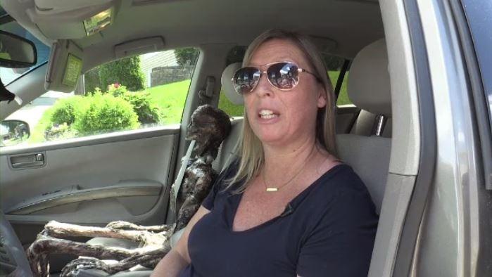 Полиция не дремлет: «покажите ваш скелет в машине»!