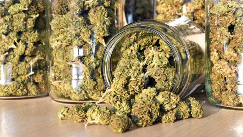 В Онтарио появилось два новых поставщика марихуаны