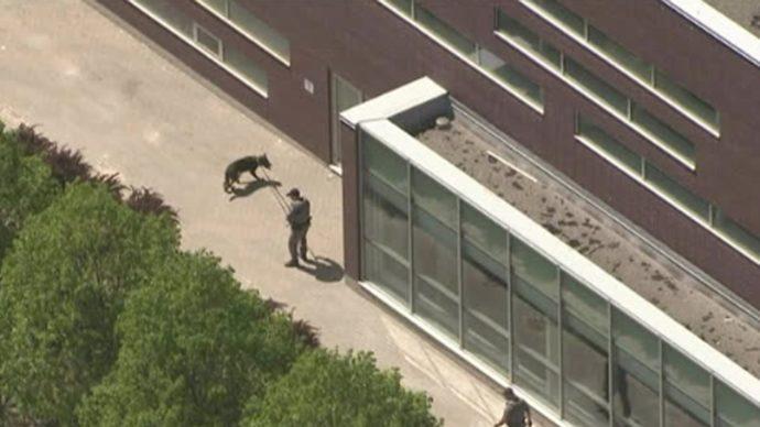 Два подростка получили пулевые ранения в Большом Торонто
