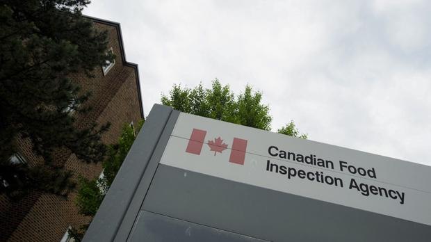 Почти 900 пищевых товаров из КНР забракованы канадской инспекцией