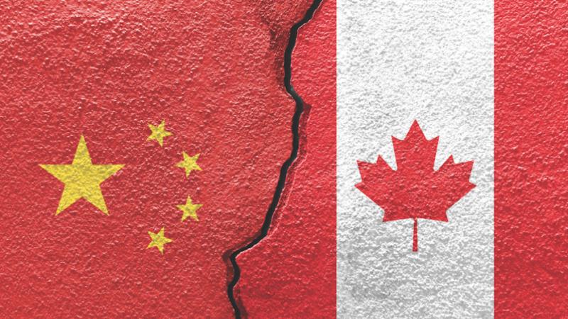 Глава канадского МИДа: бывший посол выступает не от имени правительства