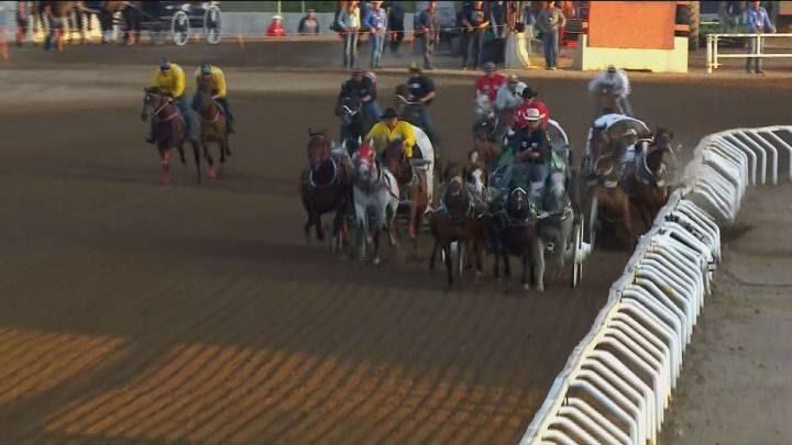 Calgary Stampede: штраф в $10 000 за гибель лошади