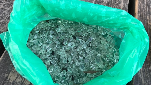 На собачьей площадке в Оттаве рассыпали битое стекло