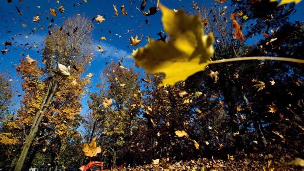 Канадская осень будет обычной, а зима в Онтарио и Квебеке— морозной