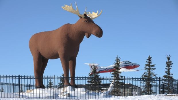 В Квебеке тоже хотят поставить своего символического лося