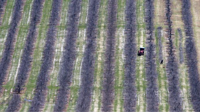 Канадские фермеры озабочены условиями найма иностранцев