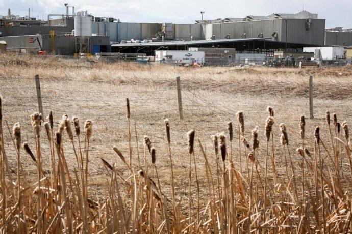 Завод по переработке мяса вновь откроется после вспышки COVID-19