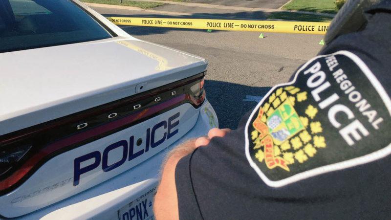 Полиция изъяла 16 автомобилей на $1.2 миллиона