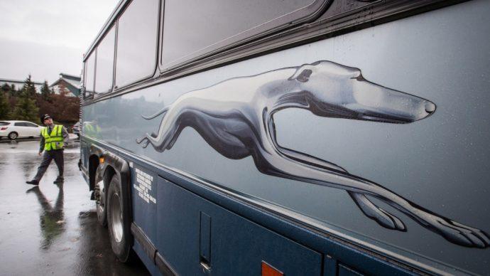 Greyhound закрывает все рейсы в Канаде