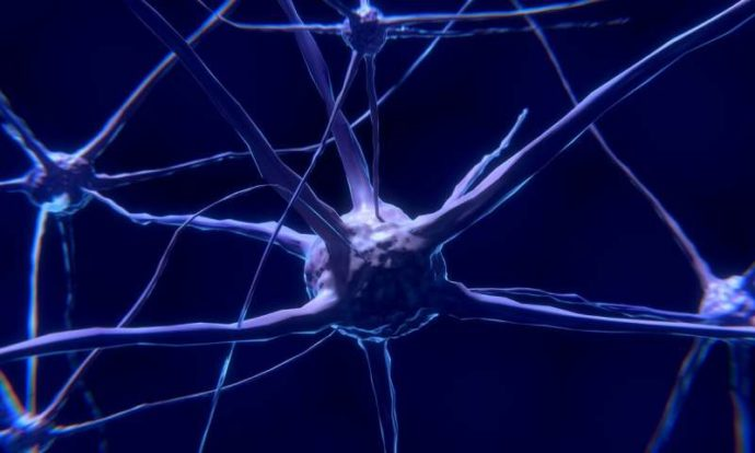 Канадцы создали новый метод лечения рака мозга