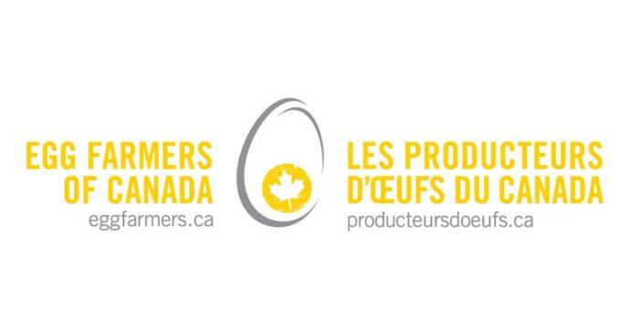 Канадские фермеры получат компенсации за яйца и птицу