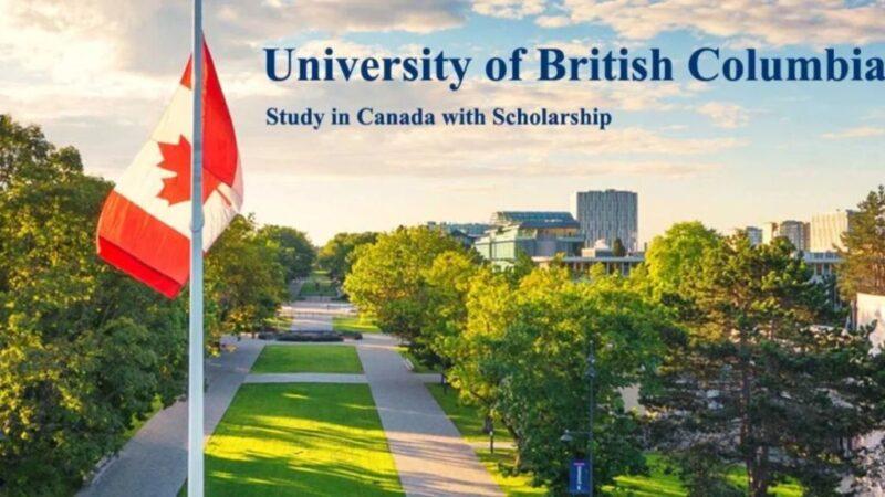 Канадский университет: борьба с онлайновыми шпаргалками